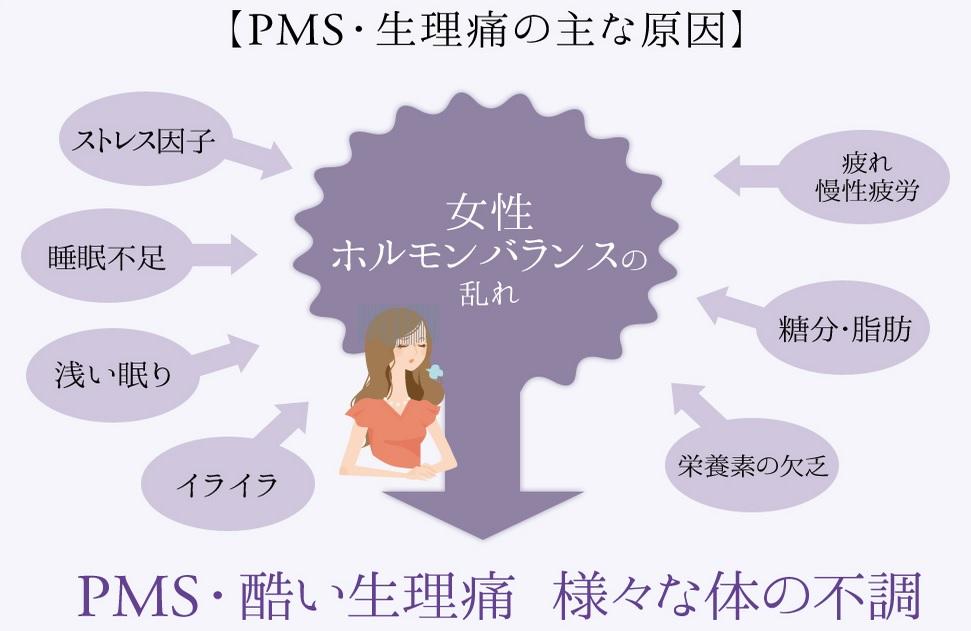 ノイ(noi)Lサポート 静の口コミと効果は?月経前症候群(PMS)の改善に効果が高いと言われるnoi Lサポート静の実力とは!